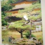 Bilde fra Tokyo55 Gonsiori