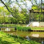 Vondelpark at walking distance from CoHo Suites