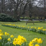 Gunton Hall Grounds, Spring 2017