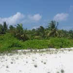 Photo of Velidhu Island Resort