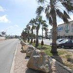 Photo of Palm Beach