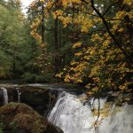 Whatcom Falls Park, only about 6 miles away. Worth the adventure!