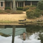 Foto de Pawleys Plantation Golf and Country Club