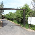 entrance to the Bird observatory