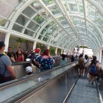 The escalators that will take you the Jurassic Park, the Mummy and the Transformers attractions