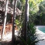 Photo de Green Tulum Cabanas & Gardens