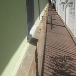 Coral Sands Motel Foto