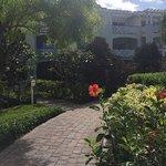 Pretty gardens around hotel