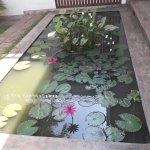 Un des bassins aux lotus dans le jardin.