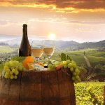 Tuscany in Tour, private wine & food tours