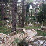 Photo of Antalya Zoo