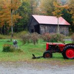 Granite Cow and red tractor