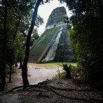 Foto de Amigos Jungle Tours