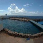 Photo of The Royal Sea Aquarium Resort