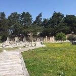 Arcadian Way Foto