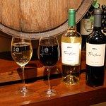Los vinos salteños