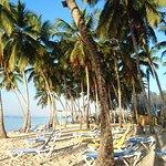 Foto de Playa Esmeralda Beach Resort