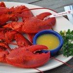 Twin Lobster Dinners