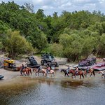 We Have more than Airboats, we now offer so much more! Horseback rides, swampbuggy rides, and mo