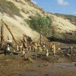 Tente PAV, nouveaux chalets bois La  plage