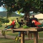 Photo of Zagaia Eco-Resort Hotel
