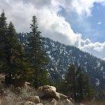 Foto di Lagonita Lodge