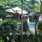 Adhi Jaya has beautiful tropical gardens and a lovely clean pool with plenty of shade.