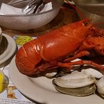 Steamed lobster + clams + cole slaw