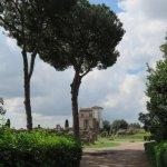 羅馬競技場照片