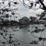 Photo of Jefferson Memorial