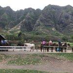 Kualoa Ranch Restaurantの写真