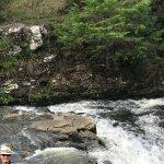 Photo de Whangarei Falls