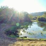 Bild från Bosch Luys Kloof Private Nature Reserve