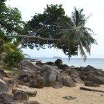 Photo of Phi Phi Relax Beach Resort