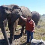 Knysna Elephant Park Photo