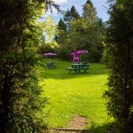 Make the most of the sunshine in our garden with a drink or some lunch
