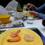 Lunch in ther garden