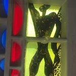 Photo de Hotel le Corbusier