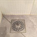 Chambre 9, évacuation de la douche n'était pas correctement nettoyée, répugnant !!!