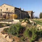 Photo of Castello di Petrata