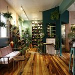 Espaço de bem-estar que reúne o Negrita Bar e a Borealis Plantas.