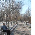 Photo of Children's Park of Harbin