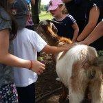 En la Granja con la Cabra