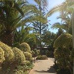 Walkway from the hotel's outside breakfast area.