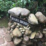 Bwindi Lodge-billede