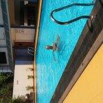 Photo of Hotel La Paz Gardens