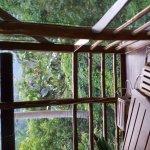 Photo of Omega Tours Eco Jungle Lodge