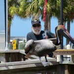 We were entertained before we departed by a fisherman feeding scraps to the birds.