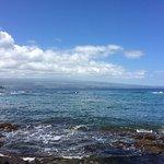 view back to Hilo and Manu Kea