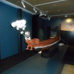 ArghyaKolkata Waikato Museum, Hamilton-42